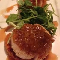 Close up of diver scallop small plate. Absolutely…